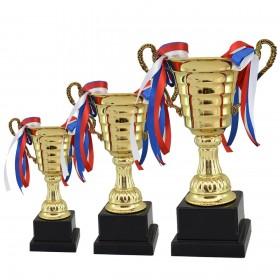 کاپ قهرمانی ورزشی مدل 4016 مجموعه 3 عددی